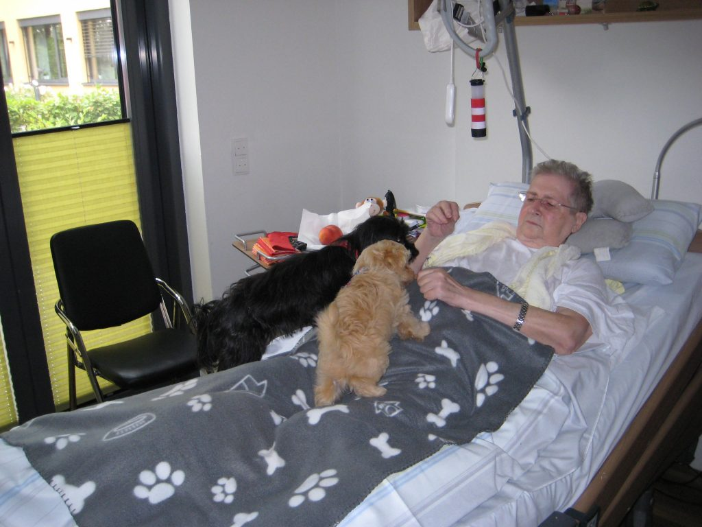 Frau Ingrid Steiner mit den Therapie-Hunden Lotte (schwarz) und Chico