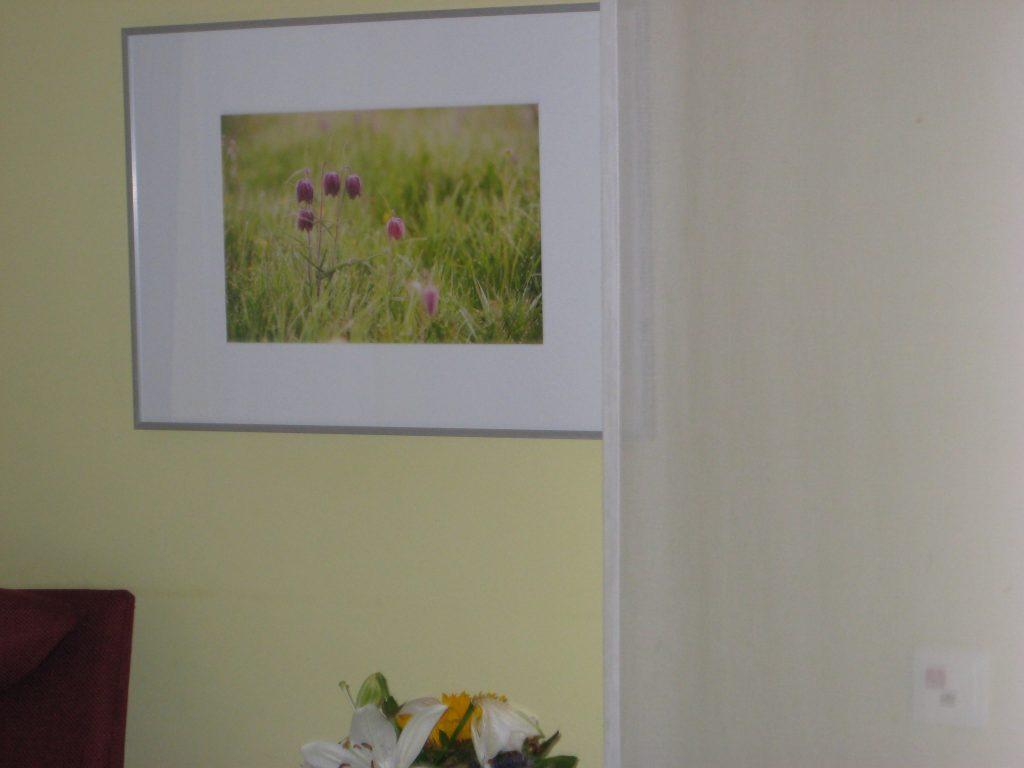 Auch dieses Bild bringt Farbe und Abwechslung ins Zimmer